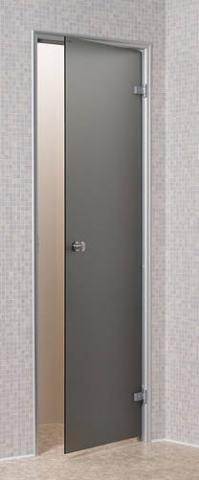Dveře do páry BASIC 8x21 GRAY (kouřové sklo)